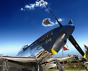P51 Photo Posters - P51 Mustang Poster by Tim Rutz
