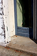 William Eggleston Framed Prints - Untitled Framed Print by Chris Fender