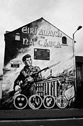 1916 Dublin Easter Rising Commemoration Republican Wall Mural Beechmount Rpg Belfast Print by Joe Fox