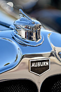 Car Mascots Framed Prints - 1929 Auburn 8-90 Speedster Hood Ornament Framed Print by Jill Reger