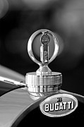 Vintage Hood Ornament Prints - 1930 Bugatti Hood Ornament Print by Jill Reger