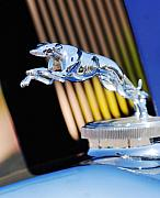Greyhound Photo Posters - 1930 Lincoln L Judkins Berline Hood Ornament Poster by Jill Reger