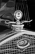 Motometer Posters - 1931 Model A Ford Deluxe Roadster Hood Ornament 2 Poster by Jill Reger