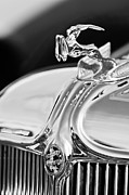 Gazelle Framed Prints - 1933 Chrysler Imperial Hood Ornament 4 Framed Print by Jill Reger