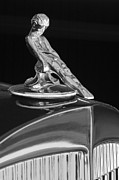 Professional Prints - 1934 Packard Hood Ornament 4 Print by Jill Reger