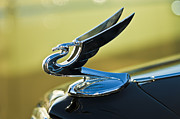 Classic Cars Photos Framed Prints - 1935 Chevrolet Sedan Hood Ornament 2 Framed Print by Jill Reger