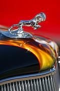 Hot Rod Photography Framed Prints - 1936 Dodge Ram Hood Ornament 1 Framed Print by Jill Reger