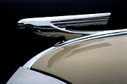 Vintage Hood Ornament Prints - 1937 Chevrolet Hood Ornament Print by Carol Leigh