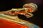 1939 Posters - 1939 Dodge Business Coupe V8 Hood Ornament Poster by Jill Reger