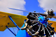 Stearman Prints - 1940 Stearman PT-18 Kadet Print by David Patterson