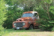 Lorri Crossno Art - 1950 Ford F100 by Lorri Crossno