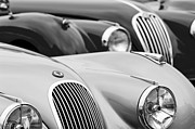 Roadster Photo Framed Prints - 1950 Jaguar XK120 Roadster Grille 2 Framed Print by Jill Reger