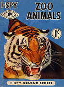 Book Cover Drawings - 1950s Uk I-spy Book Cover by The Advertising Archives