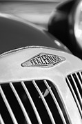 Replica Photos - 1952 Frazer-Nash Le Mans Replica MkII Competition Model Grille Emblem by Jill Reger