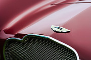 Roadster Photos - 1953 Aston Martin DB2-4 Bertone Roadster Hood Emblem by Jill Reger
