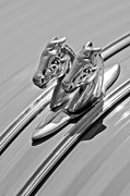 Mascot Photo Prints - 1956 Citroen 2CV Hood Ornament Print by Jill Reger