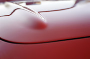 Automobile Abstract Photography Prints - 1957 Chevrolet Corvette Convertible Hood Print by Jill Reger