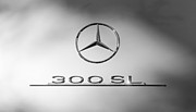 Mercedes Benz 300 Sl Classic Car Prints - 1957 Mercedes-Benz 300 SL Gullwing Emblem Print by Jill Reger
