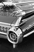 Antique Automobiles Framed Prints - 1959 Black and White Caddy Framed Print by Rich Franco