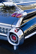 Caddy Posters - 1959 Cadillac Vertical Poster by Rich Franco