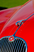 Featured Art - 1959  Jaguar XK150 SOTS Hood Ornament - Grille by Jill Reger