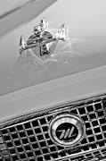 1960 Prints - 1960 Nash Metropolitan Hood Ornament Print by Jill Reger