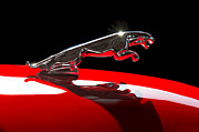 Car Photos Prints - 1961 Jaguar Kougar Hood Ornament Print by Jill Reger