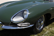 Jaguars Prints - 1961 Jaguar XKE Roadster 5D23321 Print by Wingsdomain Art and Photography
