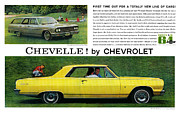 V8 Chevelle Posters - 1964 Chevelle by Chevrolet Poster by Digital Repro Depot