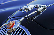 Vintage Hood Ornament Prints - 1964 Jaguar MK2 Saloon Print by Jill Reger