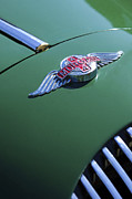 Historic Vehicle Prints - 1964 Morgan 44 Hood Ornament Print by Jill Reger