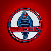 Cobra Framed Prints - 1965 Shelby Cobra Roadster 289 Emblem Framed Print by Jill Reger