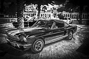 Gold Ford Prints - 1966 Ford Shelby Mustang Hertz Edition BW Print by Rich Franco