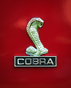 Cobra Photo Posters - 1968 Shelby Cobra GT350 Emblem Poster by Jill Reger