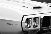 1969 Photos - 1969 Pontiac Trans Am  by Jill Reger