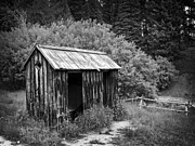 Ghost Town Outhouse Prints - 19th Century Side-by-Side Community Outhouse Print by Daniel Hagerman