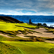Pga Photo Framed Prints - #16 at Chambers Bay Golf Course - Location of the 2015 U.S. Open Tournament Framed Print by David Patterson