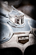 Collector Hood Ornament Metal Prints - 1929 Auburn 8-90 Speedster Hood Ornament Metal Print by Jill Reger