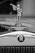 Black And White Photos Prints - 1929 Cadillac 1183 Dual Cowl Phaeton Hood Ornament Print by Jill Reger