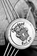Roadster Photos - 1937 Peugeot 402 Darlmat Legere Special Sport Roadster Recreation Steering Wheel Emblem by Jill Reger