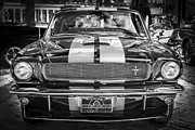 Mustang Gt350 Prints - 1966 Ford Shelby Mustang Hertz Edition BW Print by Rich Franco