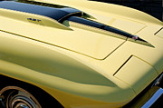 Sports Cars Posters - 1967 Chevrolet Corvette Hood Poster by Jill Reger