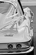 Photographer Art - 1967 Chevrolet Corvette by Jill Reger