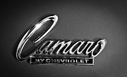 1969 Photos - 1969 Chevrolet Camaro Emblem by Jill Reger