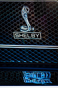 1969 Photos - 1969 Shelby GT500 Convertible 428 Cobra Jet Grille Emblem by Jill Reger