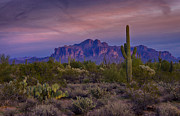 The Superstitions Prints - A Beautiful Desert Evening  Print by Saija  Lehtonen