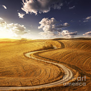Dirt Roads Photos - A Country Road In Field At Sunset by Evgeny Kuklev