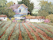 Shed Painting Prints - A Farmhouse I Saw in Virginia Print by Joyce Hicks