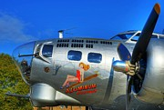 Propellers Prints - A Flying Fortress Print by Mel Steinhauer