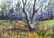 A Tree For Thee Print by Carol Wisniewski